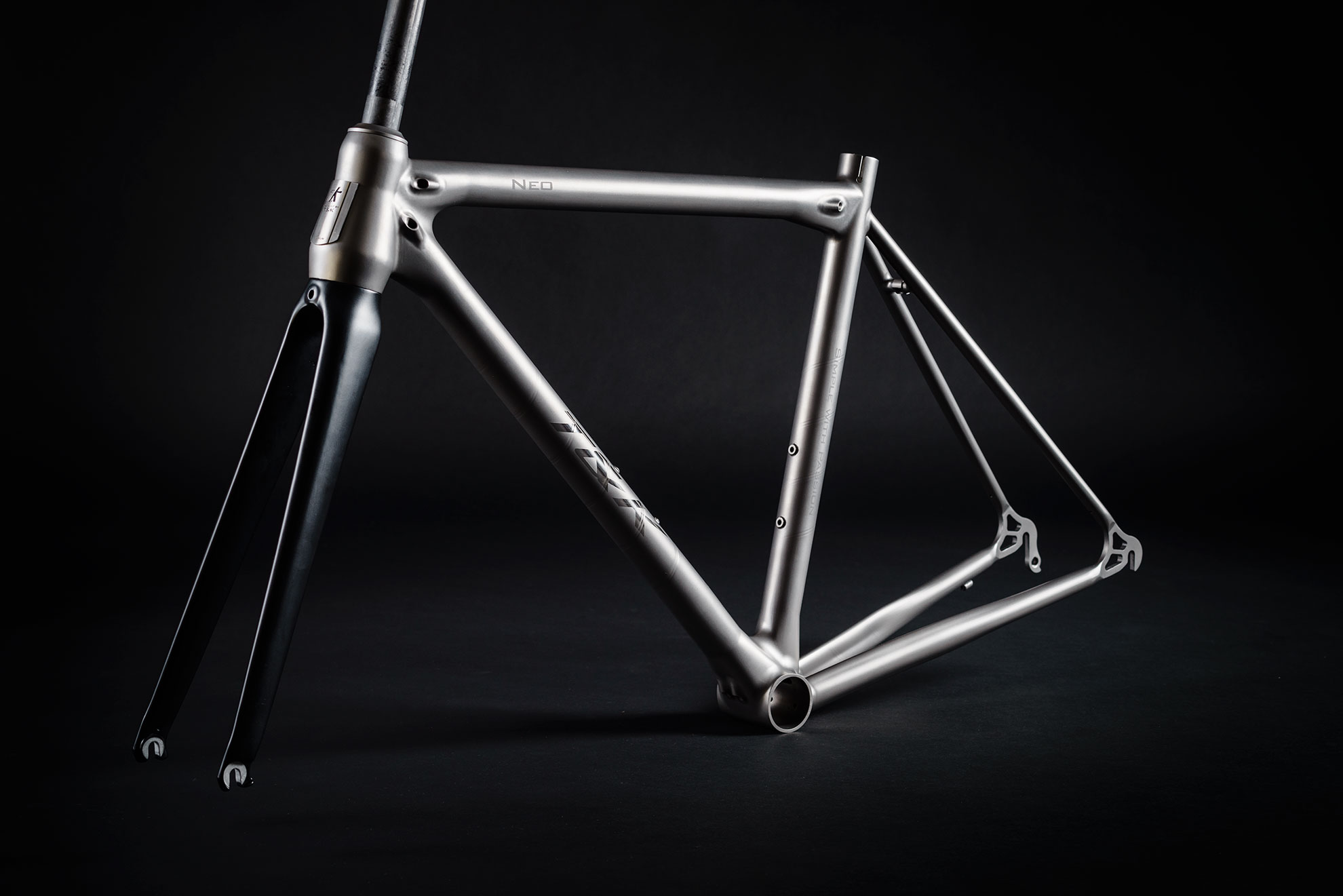 NEO with carbon fork